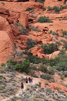 Hikers in the calico hills