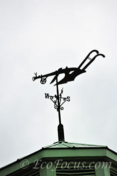 Plow weather vane