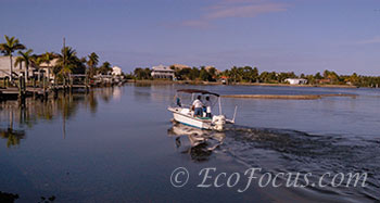 Boat near Matlacha